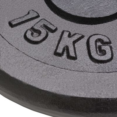 vidaXL Weight Plates 2 pcs 2x15 kg Cast Iron