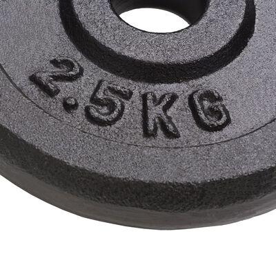 vidaXL Weight Plates 8 pcs 8x2.5 kg Cast Iron