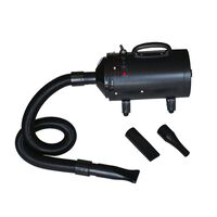 vidaXL Dog Hair Dryer with 3 Nozzles Black 2400 W