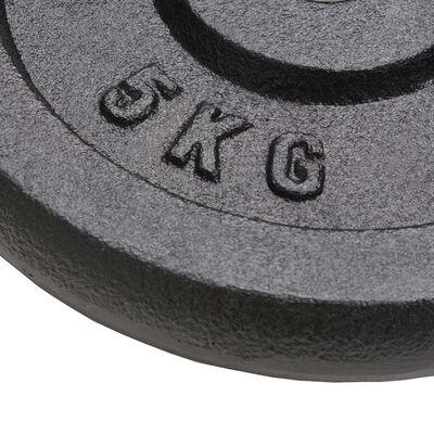 vidaXL Weight Plates 4 pcs 4x5 kg Cast Iron