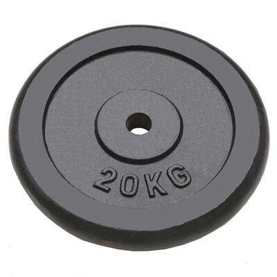 vidaXL Weight Plates 2 pcs 2x20 kg Cast Iron